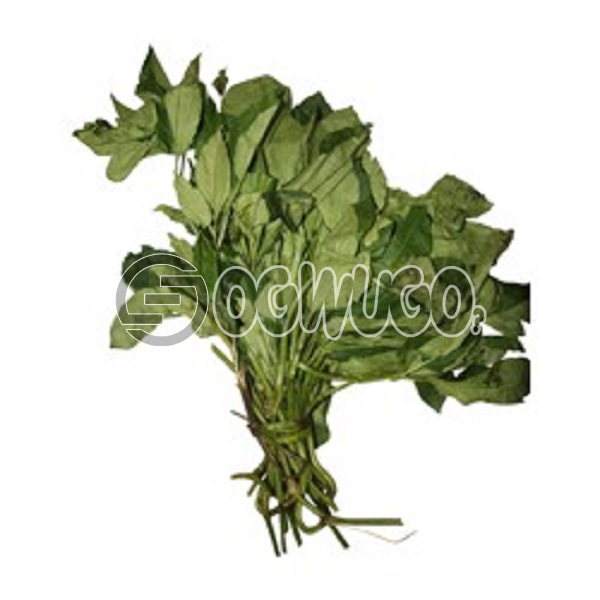 1 head of utazi leaf very healthy, affordable and easy to come your way.: unable to load image