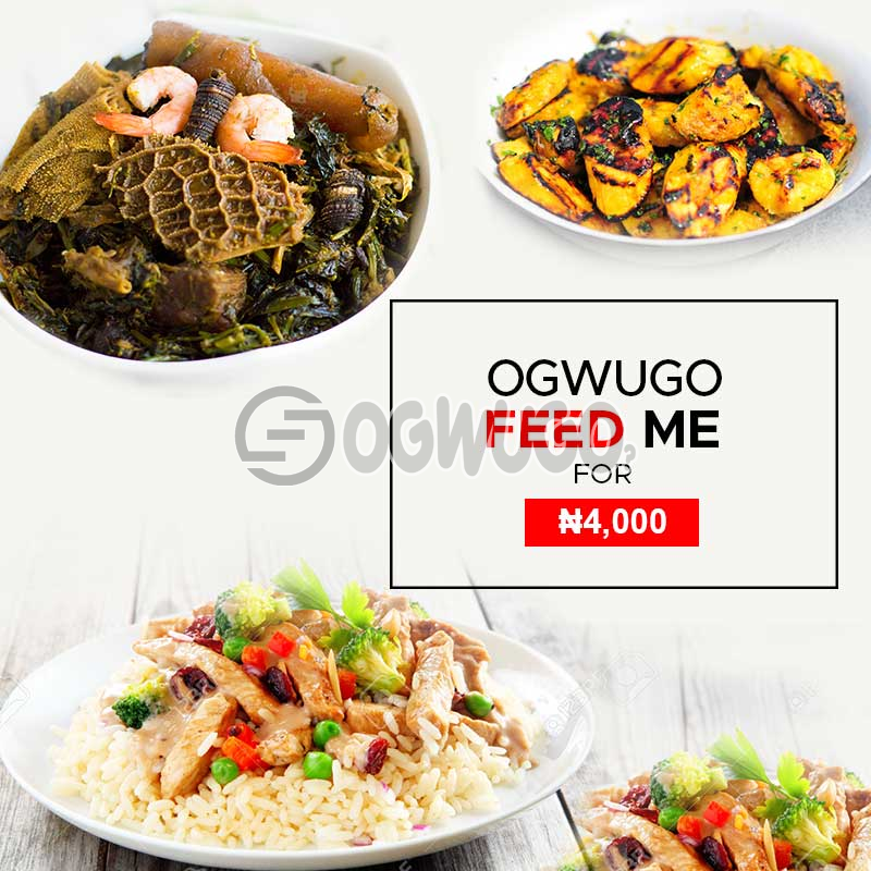 Ogwugo feed me food promo package (once subscription for this package is made, we will start delivering food to you from the next day for 5 working days according to the food menu. Please  select your meal for the day below)